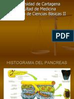 FISIOLOGIA DEL PANCREAS EXOCRINO