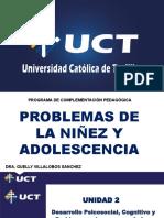 Problemas Del Niño y Del Adolescente Guelly 2 (1).Pptx