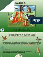 modulo 6 - NATURA A BUCCINASCO