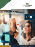 Jornal - De Projeto Agile a organizacoes Agile
