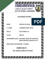 REPORT OF NBP BY DILDAR ALI( maridildarali2020@gmail.com