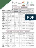 Calendário de Vacinação Adoslescente ADULTO e Idoso  2018 JULHO walfrido EEEP