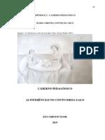 Maria Cristina Fontes Cruz-caderno Pedagogico