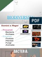 La biodiversitá
