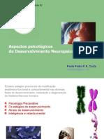 Neuropsicomotor-Psico