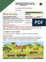 C. NATURALES1    PRIMERO