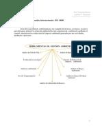 Tema 9. Normas Ambientales Internacionales. Iso 14000 (1)