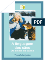 OS-SINAIS-DE-CALMA-TURID-RUGAAS