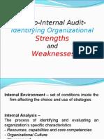 Internal audit report