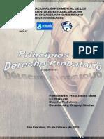 Principios Derecho Probatorio