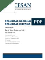 SEGURIDAD NACIONAL E INTERIOR