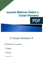 Noções Básicas Sobre O Corpo Humano