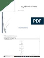 Actividad_Dfd_practica (Tarea)_STALIN_VARGAS
