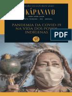 ALEIXO - 2020 - Mortes, Invasões e Garimpo Em TI de RR - Mobilização Etnicas e Conflitos Sociais