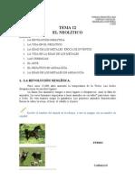 Sociales1eso-Tema12-EL Neolítico-(1)