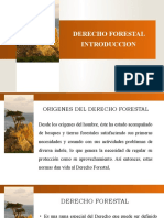 Derecho Forestal