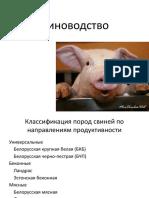 1 2 3 свиноводство_1611431215