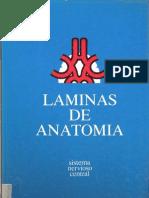 Láminas de Anatomía del SNC