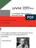 1.3_c_Enfoques_teoricos_sobre_el_desarrollo