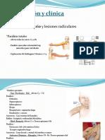 Clasificación y Clínica Recursos Biomecanicos