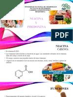 VIT.HIDROSOLUBLES NIACINA Y PIRIDOXINA