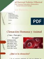 Clonación-Humana-y-Animal