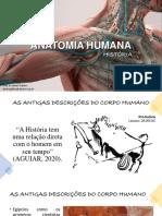 Aula 01 História da Anatomia
