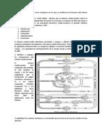 trabajo fsiologia 2