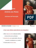 estrutura_da_peroracao