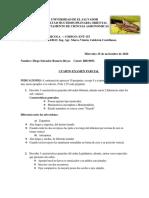 Parcial Final.pdf 1.1 (1)