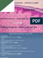 13. Patologia Sistemului Musculo – Scheletal Și a Pielii_0