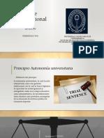 Corte Constitucional (2)