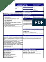 formato descripcion de puesto_supervisor autoservicio