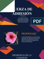 Fuerza de adhesión presentación
