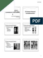 6 Examen Postural