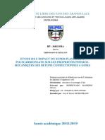 Etude de l'impact du superplastifiant polycarboxylate sur les propriétés physico-mécaniques du béton confectionné à Goma