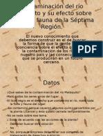 Contaminación del río Mataquito y su efecto sobre