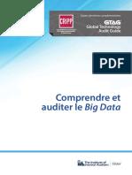GTAG Comprendre Et Auditer Le Big Data