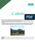 olivier.pdf