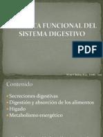 Sistema_Digestivo_(secreciones_y_absorcion)