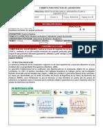03_04_MODELADO_MOLECULAR_DE_CASQUETE_PERFORADO-2