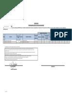 Formato de entrega desempeño docente- Q4 2020