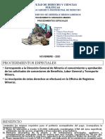 Procedimiento Ordinario Minero y Procedimientos Especiales