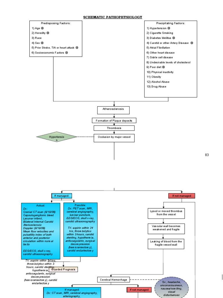 Schematic pathophysiology CVA | Ischemia | Stroke