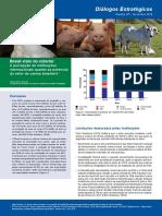 Brasil Visto Do Exterior - Pecuária