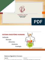 Sistema Digestorio Humano - 8o - Ana Gardenia 0