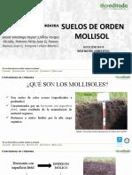 MOLLISOLES PRESENTACIÓN, GEOCIENCIAS II G01