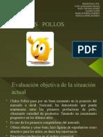 CHIKIS   POLLOS TALLER II
