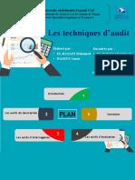 Les techniques d'audit  (1)