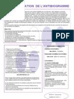 Antibiogramme-3